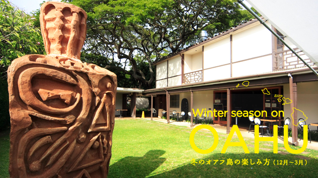 Winter season on OAHU:冬のオアフ島の楽しみ方(12月〜3月)